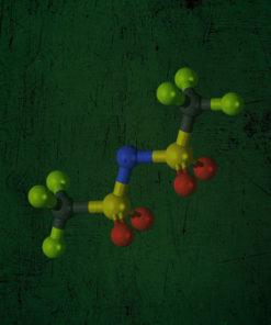 Aminoacizi vegetali