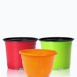 Ghivece colorate