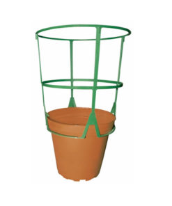 Suport plante